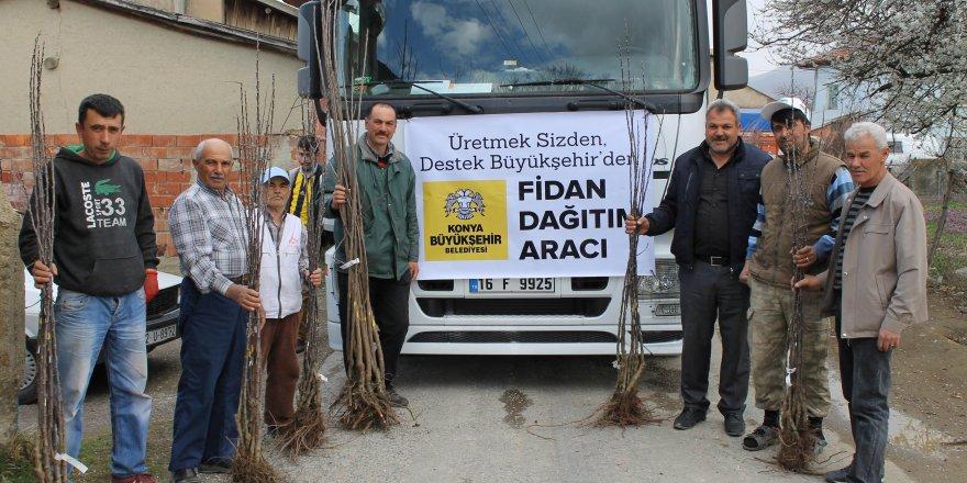 Konya'da çiftçiye 2016'da 9,2 milyonluk fidan ve fide desteği sağlandı