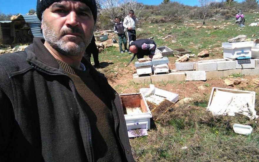 Bozkır'da arı kovanlarına ayı saldırısı