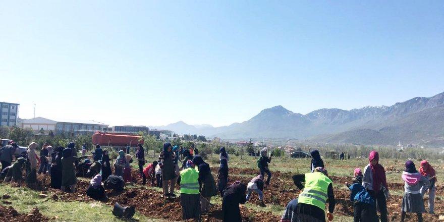 Seydişehir'de öğrenciler fidan dikti