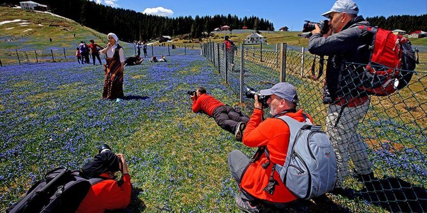 Karadeniz'in Baharı Fotoğrafçılar Büyülüyor