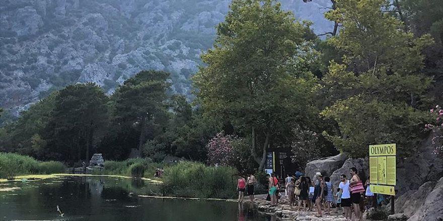 Olimpos'un Zıplayan Balıkları İlgi Odağı