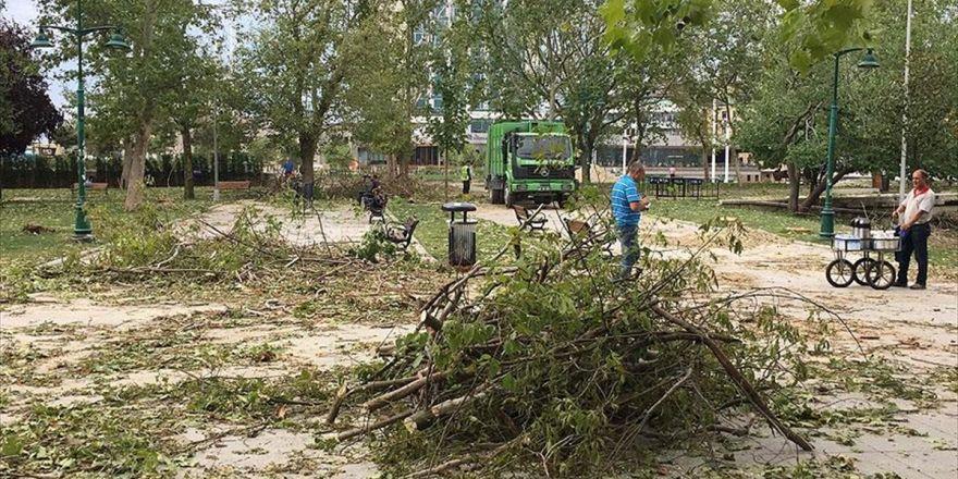 İstanbul'da Fırtınanın Devirdiği Ağaçlar Kaldırılıyor