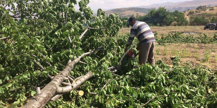 Para etmeyen kiraz ağaçlarını kesip odun yaptı