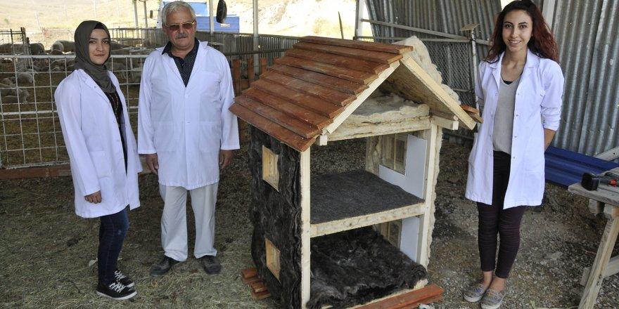 Bina Yalıtımlarında Alternatif Ürün: Koyun Yünü