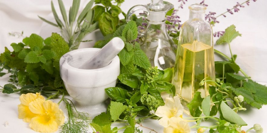 Bitkisel ilaçlara rağbet arttı