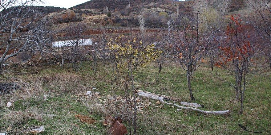 """Konya'da """"Hayvan Otlatma"""" Kavgası: 1 Ölü, 1 Yaralı"""