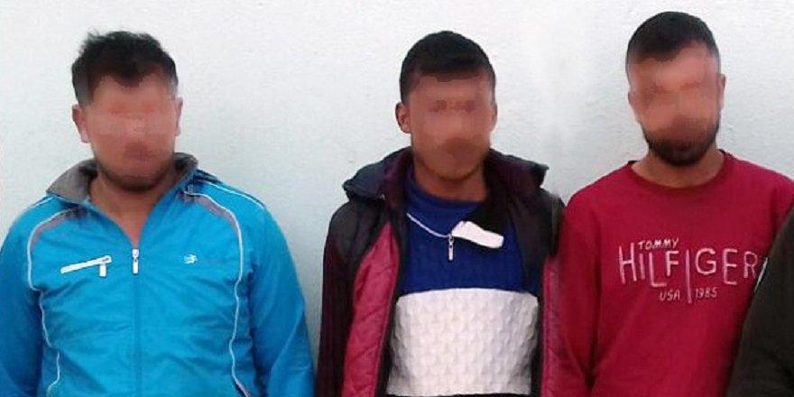 Güvercin katliamı yapan 3 kişi yakalandı