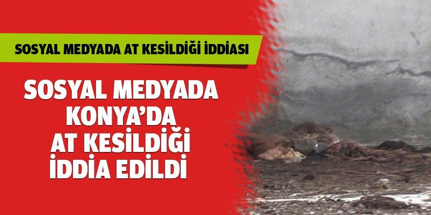 Sosyal Medyadan Konya'da at kesildiği iddia edildi