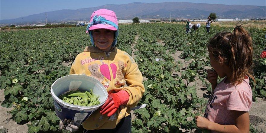 Başbakanlıktan 'Çocuk İşçiliği İle Mücadele' Genelgesi