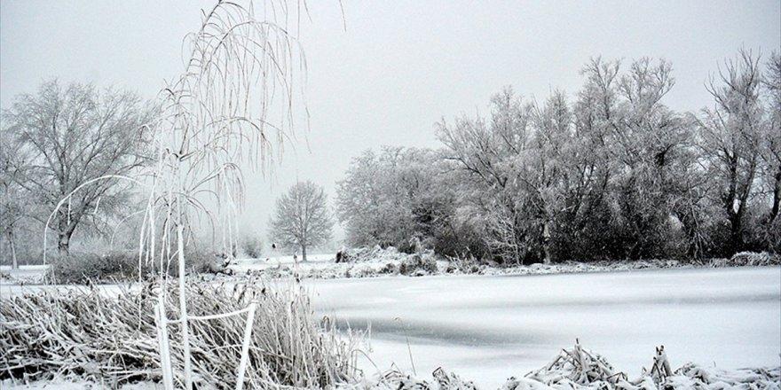 Polonya Ve Çekya'da Soğuk Hava Can Alıyor