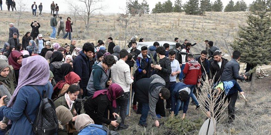 Elazığ'da Afrin Şehitleri İçin Fidan Dikildi