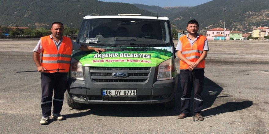 Akşehir Kurban Bayramına hazır