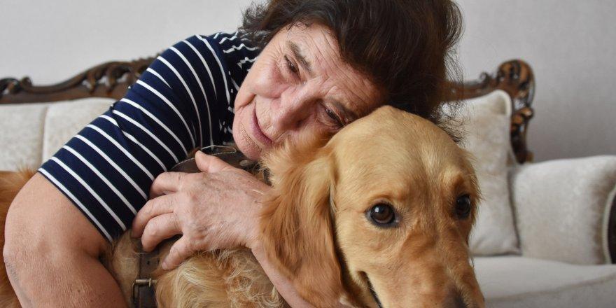 4 yıldır evinde beslediği köpeği, mahkeme kararıyla tahliye edilecek