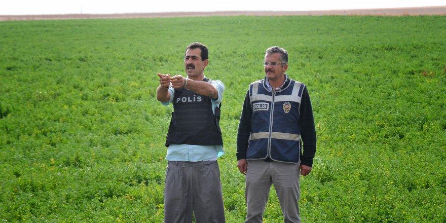 Çiftlik sahibi ile Afgan işçiyi, ağabey öldürmüş