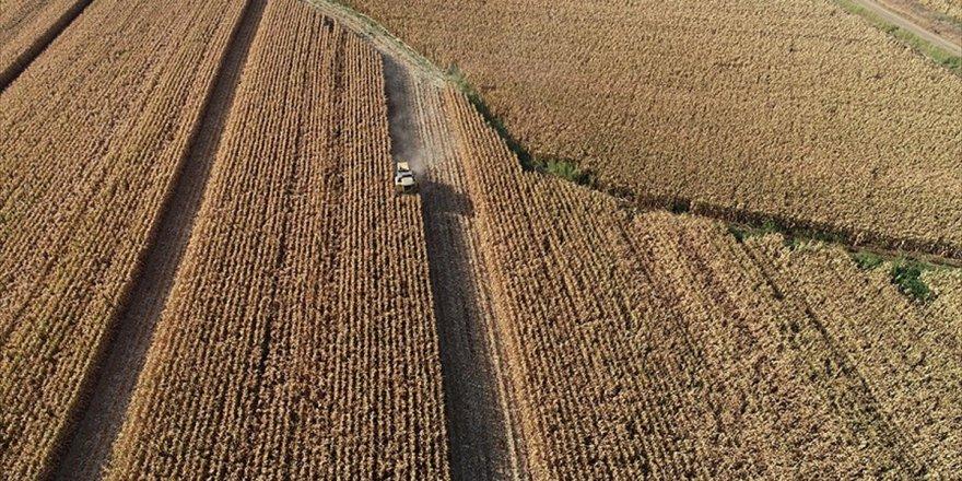 Hazineye Ait Tarım Arazileri İçin 90 Bin Başvuru