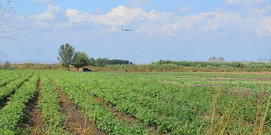 Çiftçilerin Hazine Arazilerini Kiralayabilmesi İçin Son Fırsat