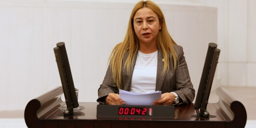 Milletvekili Esin Kara'dan, mali müşavirlere arabuluculuk talebi