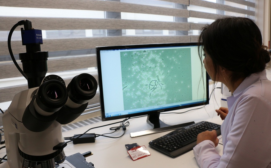 KGTÜ, bilimsel araştırmada Dünya ile yarışıyor