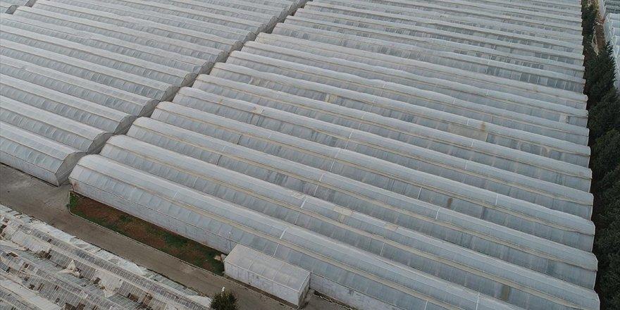 'Tarıma Yönelik Kredi Paketiyle Gıda Enflasyonu Dengelenir'