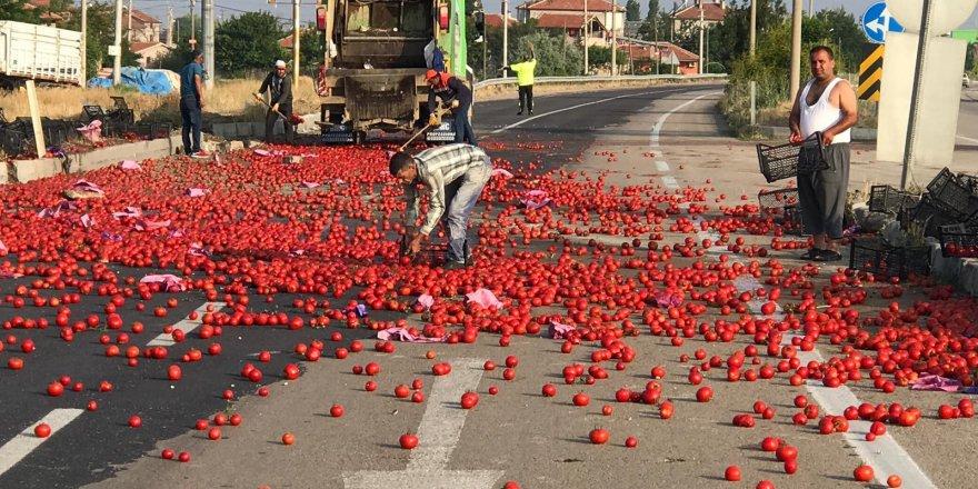 Karayolu domates tarlasına döndü