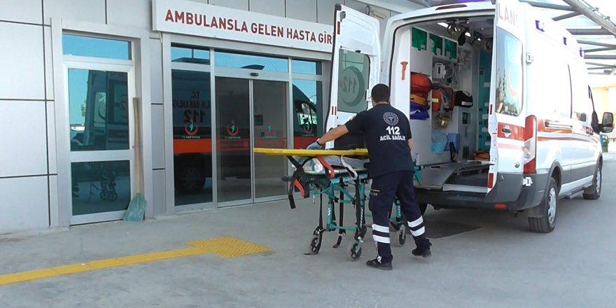 Ceviz Hasadı Nedeniyle Hastanelere Gelen Düşme Vakası Arttı