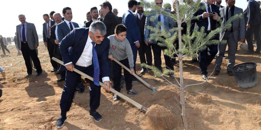 """KOSKİ'den """"Geleceğe Nefes"""" için 42 bin fidan"""