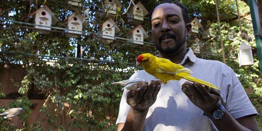 Gençlere Çevre Bilinci Aşılamak İçin Evinin Bahçesini Yağmur Ormanına Çevirdi