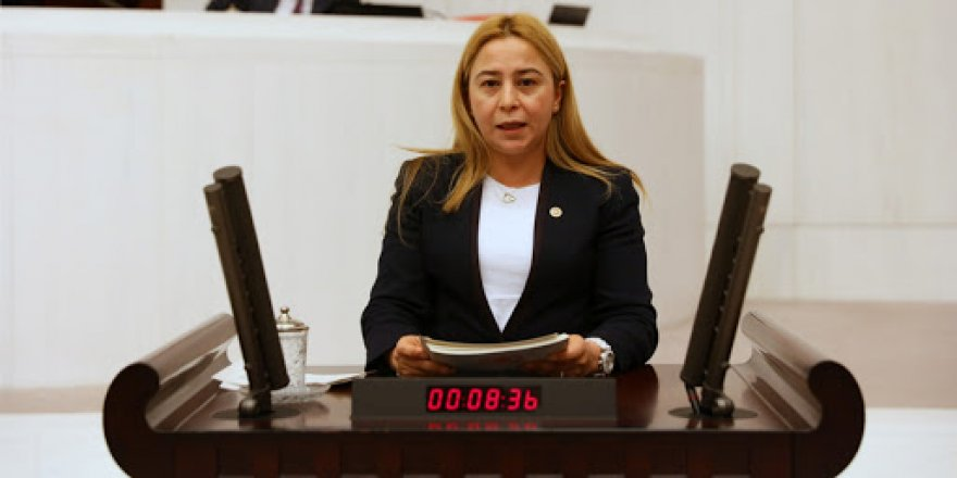 Milletvekili Esin Kara'dan, Bağımsız Denetçilik hakkında soru önergesi