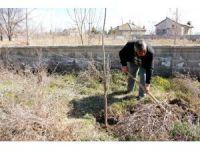 Seydişehir'de bin 100 fidan toprakla buluştu