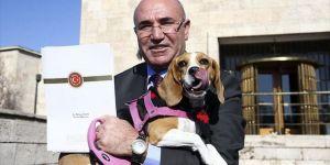 Chp'li Tanal Köpeğiyle Basın Toplantısı Düzenledi