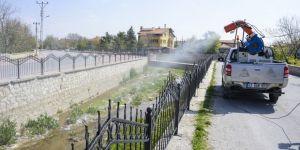 Meram'da haşereyle mücadele başladı
