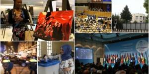 Dış Politikada 2017 Böyle Geçti