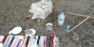 Konya'da bağırtlak kuşu avcılarına ceza