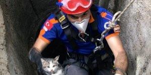 Su Kuyusuna Düşen Yavru Kedi Kurtarıldı