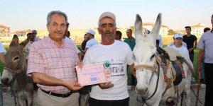 Akşehir'de eşeğe binme ve en güzel gözlü eşek yarışları yapıldı