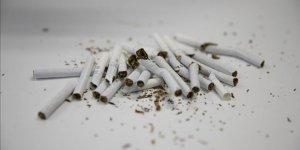 Tütün Kullanımı Önlenebilir Ölüm Nedenleri Arasında İlk Sırada