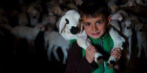 """Konya'da Üreticinin Ağılında """"Mart"""" Bereketi"""