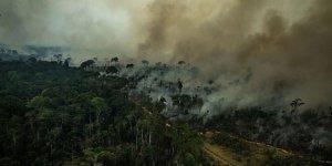 Dünyanın Akciğerleri Amazonlar Yanıyor