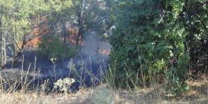 Seydişehir'de Meyve Bahçesinde Yangın