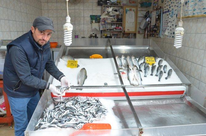 Av yasağı başladı balık fiyatları arttı