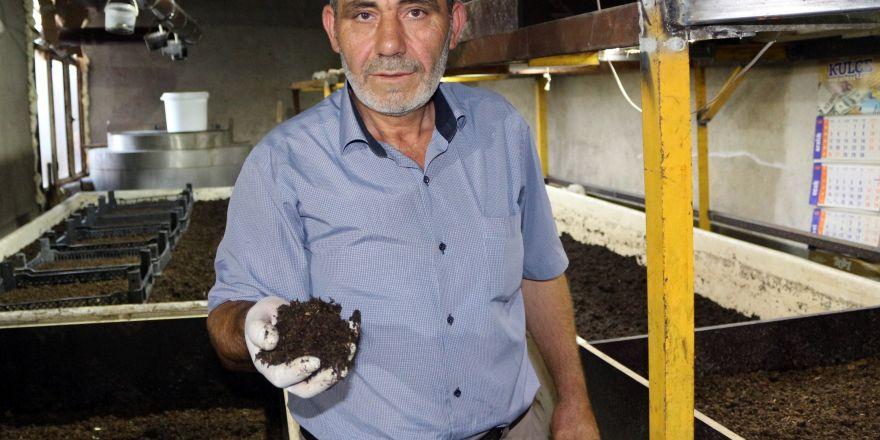 Elde ettiği solucan gübresiyle toprağın verimini arttırıyor