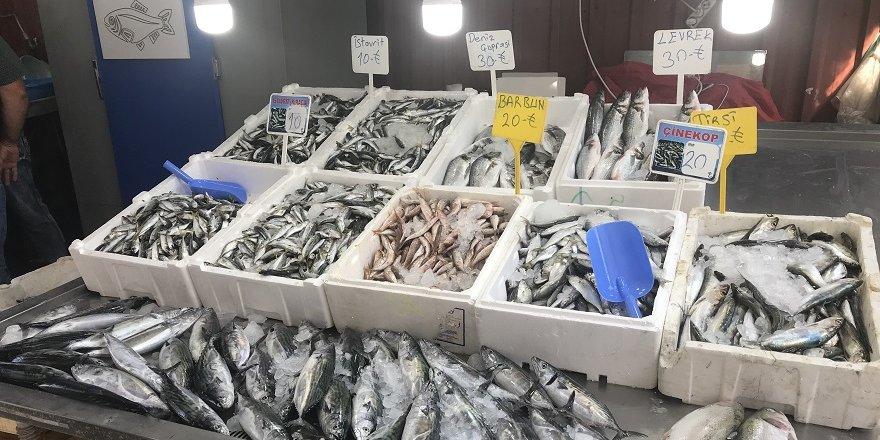 Tezgâhlar balık çeşitleriyle şenlendi