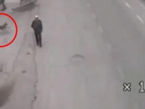 Polisi görünce avını yere bırakıp topukladı